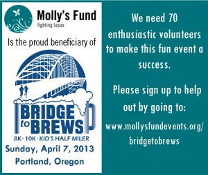 Bridge to Brews Banner 890x751